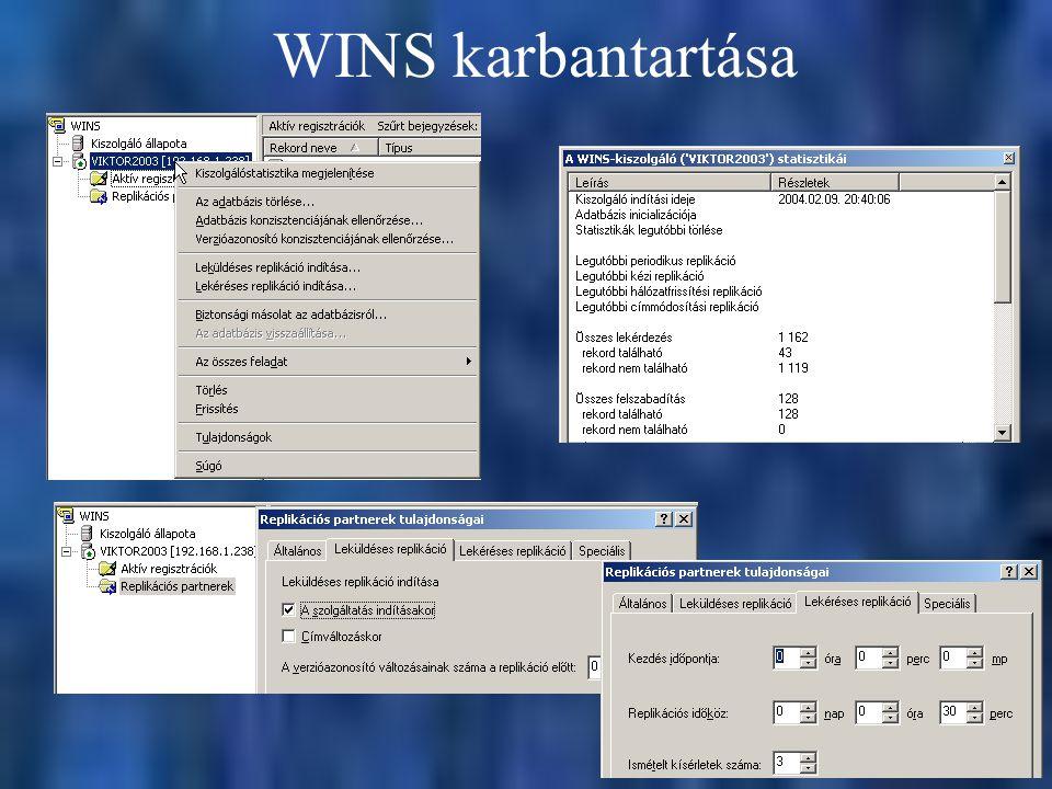 WINS karbantartása