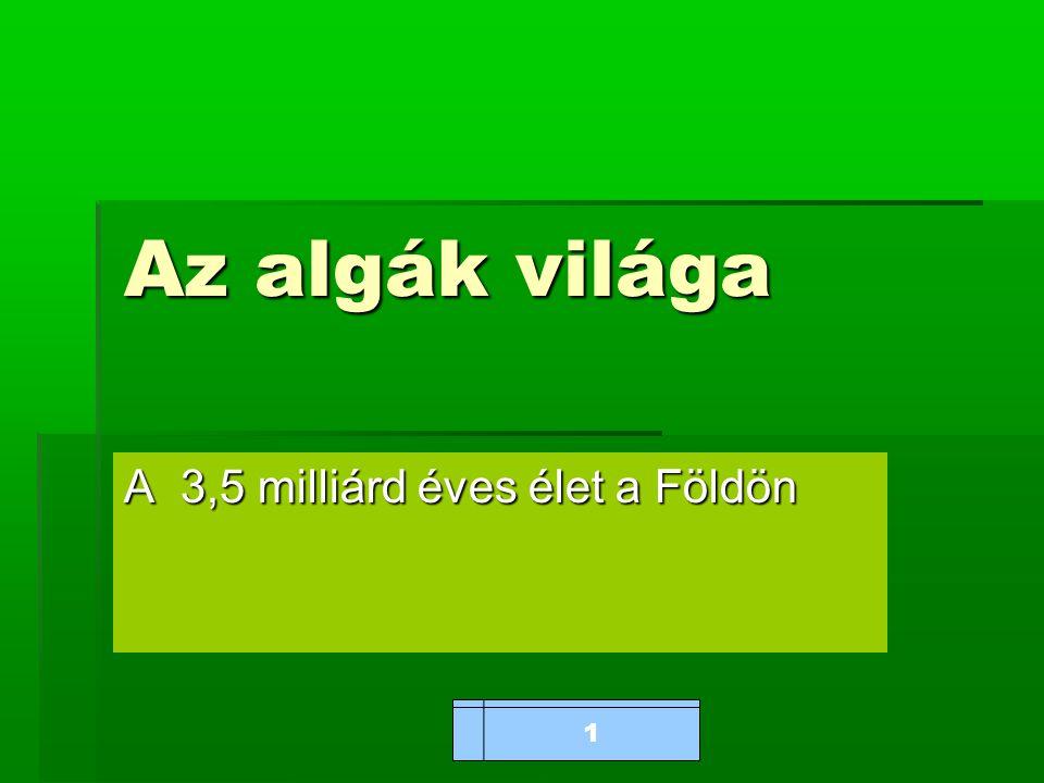www.bioalga.hu Az algák világa A 3,5 milliárd éves élet a Földön 1
