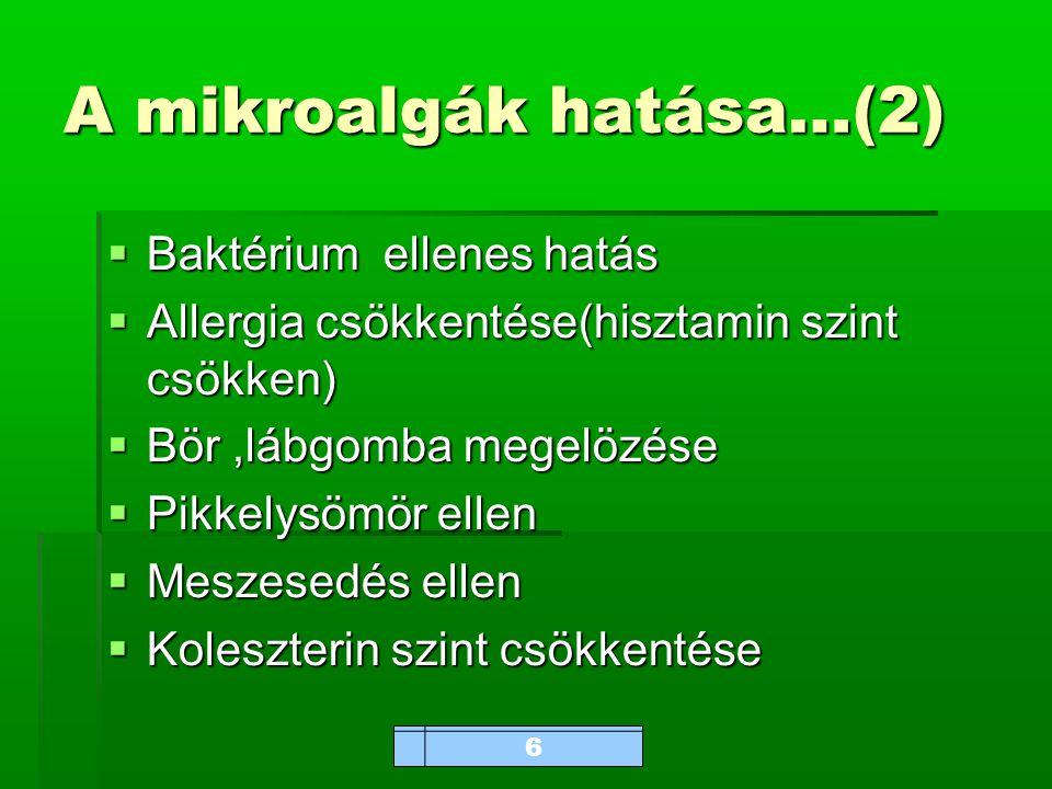 www.bioalga.hu A mikroalgák hatása…(2)  Baktérium ellenes hatás  Allergia csökkentése(hisztamin szint csökken)  Bör,lábgomba megelözése  Pikkelysömör ellen  Meszesedés ellen  Koleszterin szint csökkentése 6