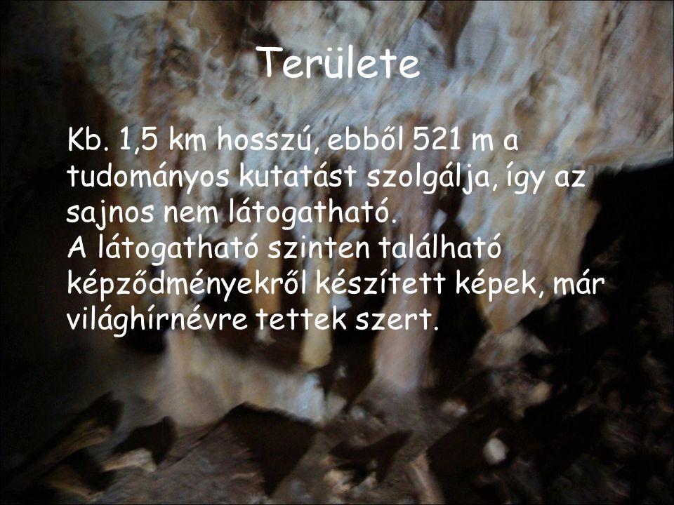 Fontosabb részei A Medve, az Emil Racoviţ ă, és a Gyertyák folyosókon keresztül juthatunk el a Gyertyák, a Spagettik, és a Csontok termébe.
