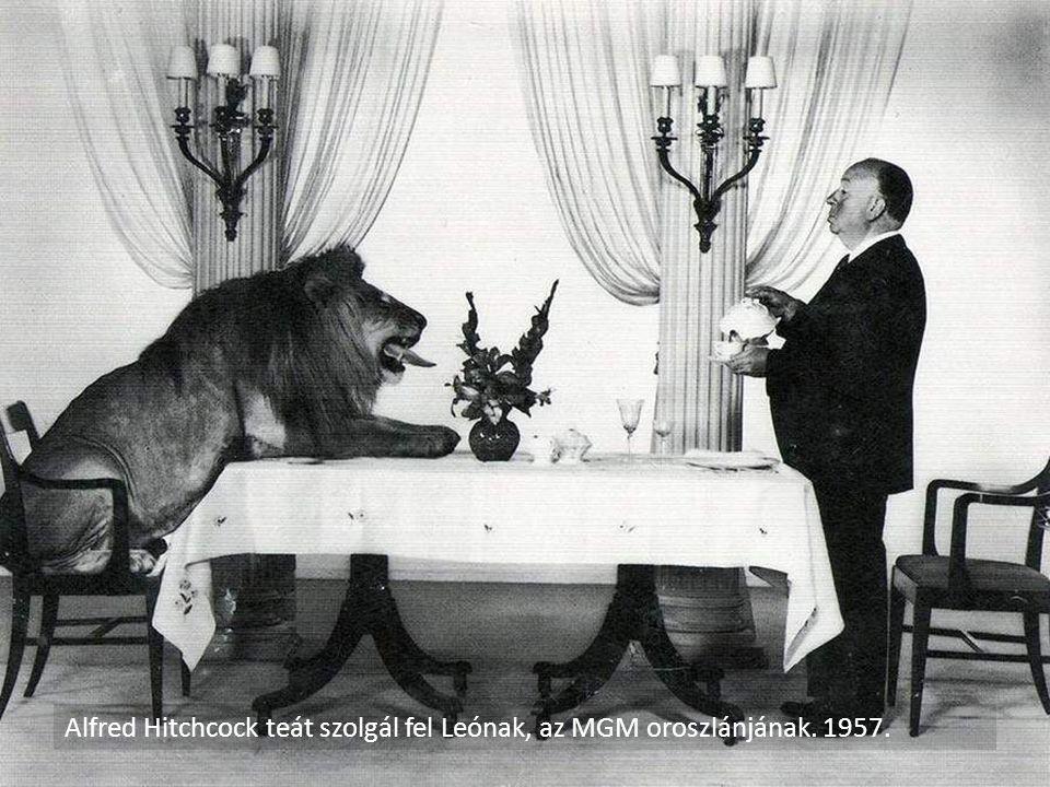 Alfred Hitchcock teát szolgál fel Leónak, az MGM oroszlánjának. 1957.