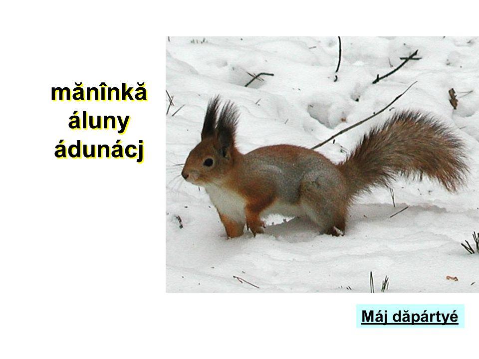 áluny ádunácj dulsjemé frunzé Sjé mănînkă mokusu járná