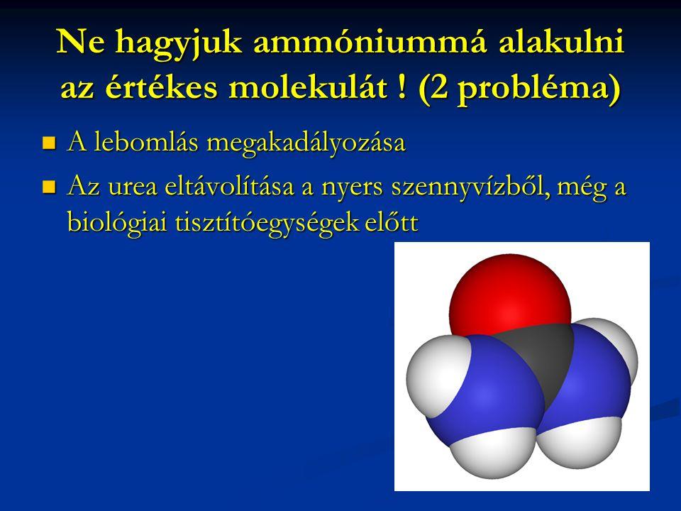 Ne hagyjuk ammóniummá alakulni az értékes molekulát .