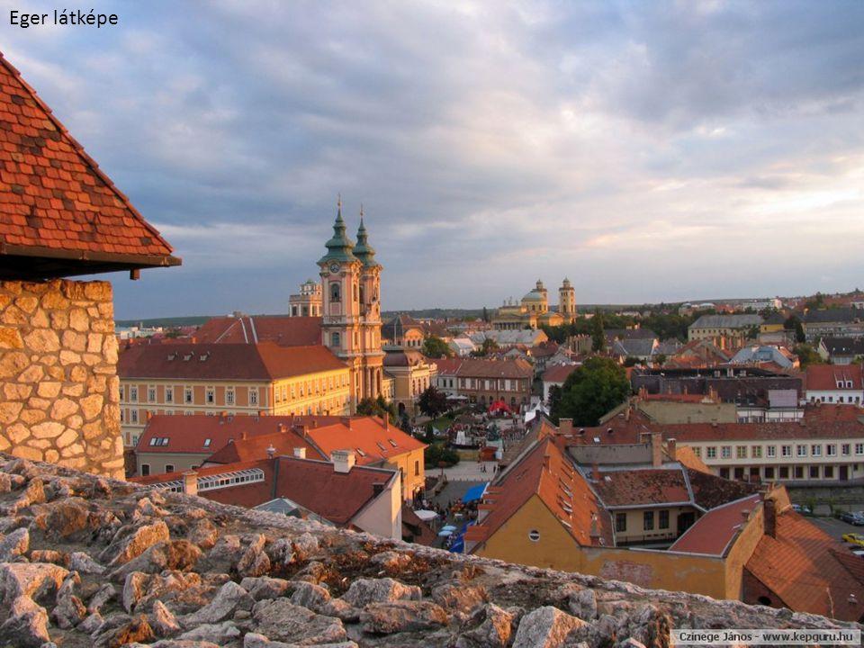 Dunaföldvári vármúzeum