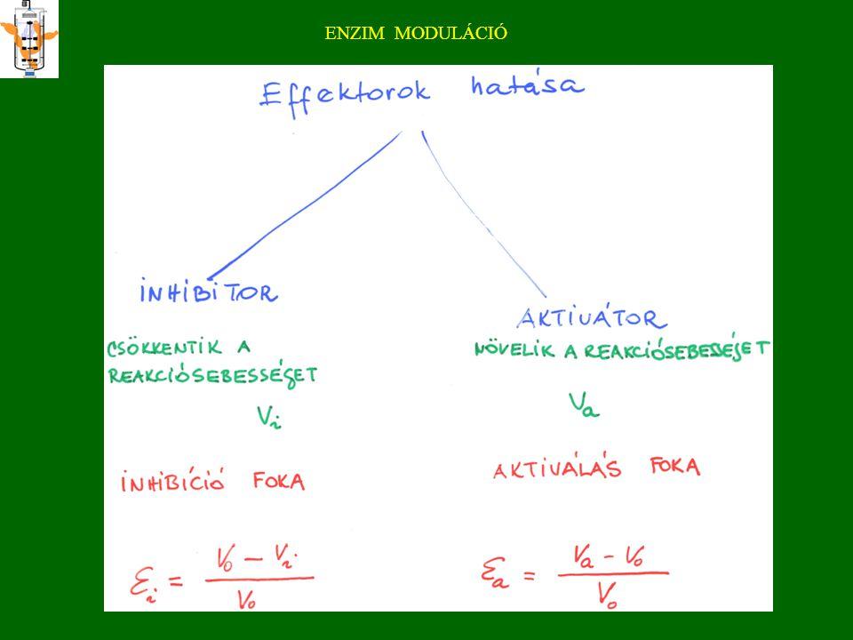 k cat alsó határa metabolikus enzimeknél Természetes enzimeknél: >10 5 Mesterséges e-nél (DNA-zyme, abzyme:<10 3 <10 8 -10 9 M -1 s -1 diffúziókontrollált bimolekuláris reakció