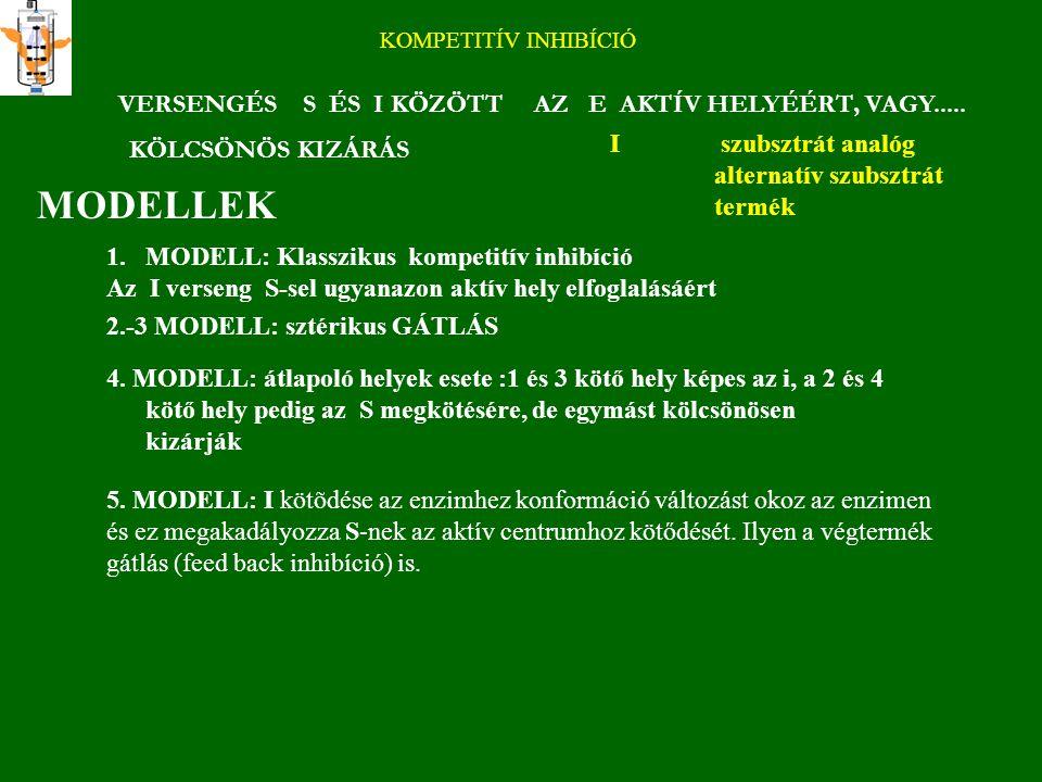 """INHIBÍCIÓ REVERZIBILIS IRREVERZIBILIS E + S ES E + P + I E I DINAMIKUS EI KOMPLEX LINEÁRIS INHIBÍCIÓ komplett k P NEMLINEÁRIS INHIBÍCIÓ (HIPERBOLIKUS) részleges βk P """"csökkent, maradék aktivitás 1/V - I ábrázolás DIXON ábrázolás"""