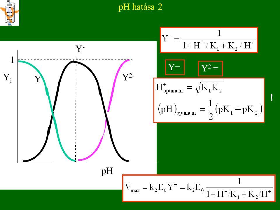 EGYÉB HATÁSOK AZ ENZIMAKTIVITÁSRA Ionerősség pH Hőmérséklet Nyírás Nyomás (hidrosztatikai) Felületi feszültség Kémiai szerek (alkohol, urea, H 2 O 2...) Fény, hang, ionizáló sugárzások REVERZIBILIS VÁLTOZÁSOK IRREVERZIBILIS