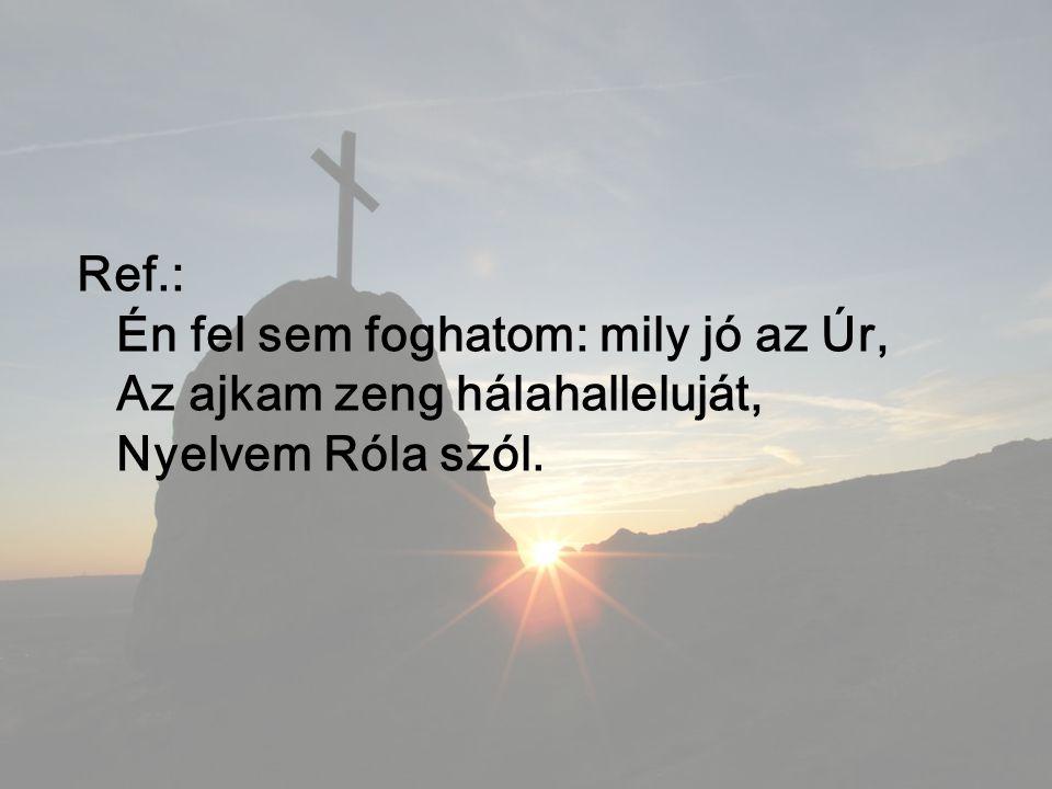 Ref.: Én fel sem foghatom: mily jó az Úr, Az ajkam zeng hálahalleluját, Nyelvem Róla szól.