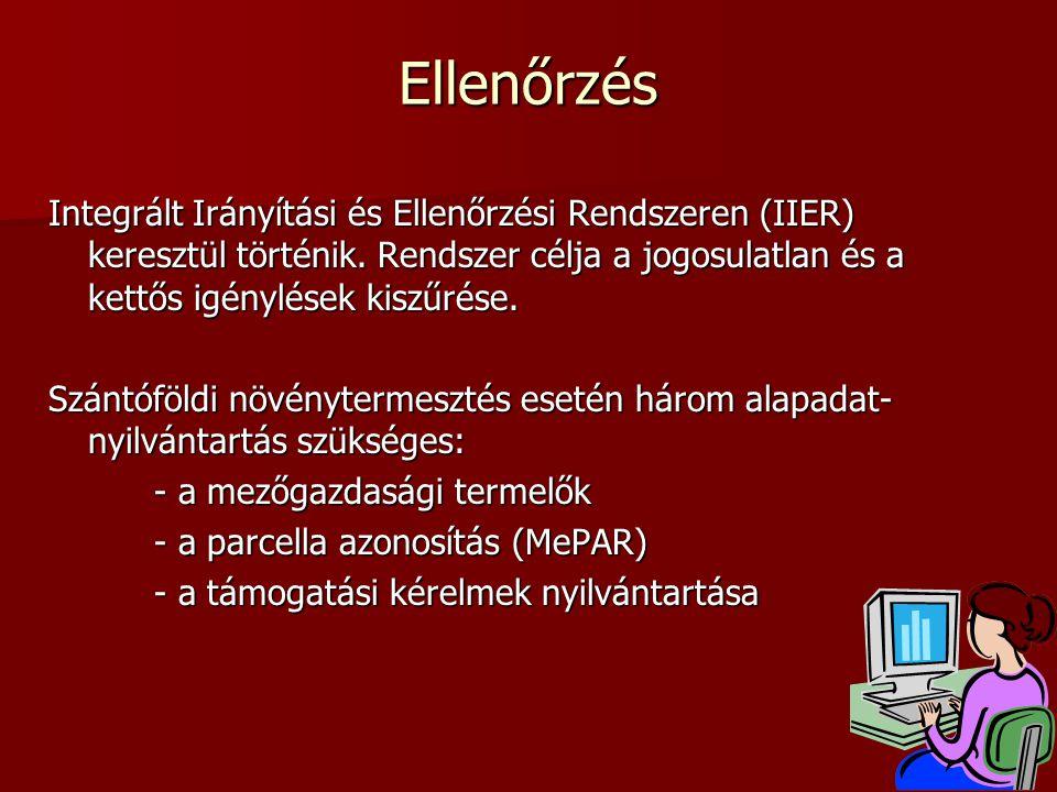 Ellenőrzés Integrált Irányítási és Ellenőrzési Rendszeren (IIER) keresztül történik.