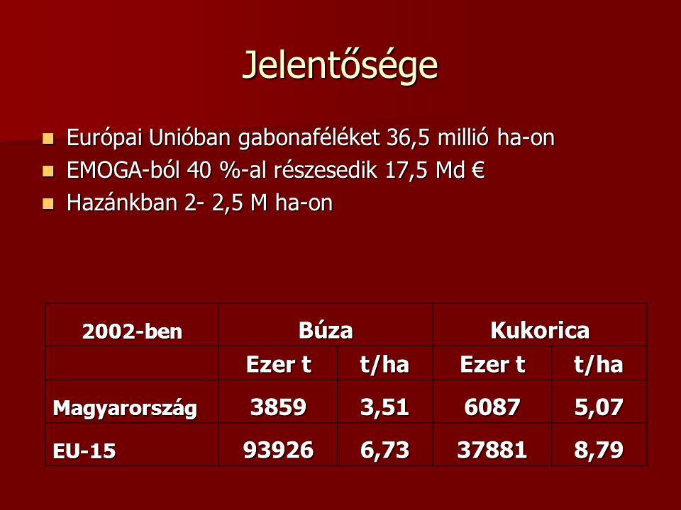 Jelentősége Európai Unióban gabonaféléket 36,5 millió ha-on Európai Unióban gabonaféléket 36,5 millió ha-on EMOGA-ból 40 %-al részesedik 17,5 Md € EMOGA-ból 40 %-al részesedik 17,5 Md € Hazánkban 2- 2,5 M ha-on Hazánkban 2- 2,5 M ha-on 2002-benBúzaKukorica Ezer t t/ha t/ha Magyarország38593,5160875,07 EU-15939266,73378818,79