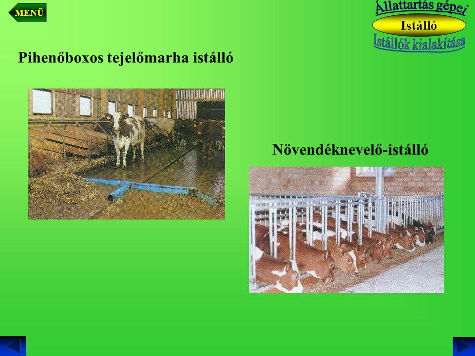 Növendéknevelő-istálló Pihenőboxos tejelőmarha istálló Istálló MENÜ