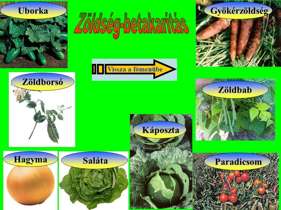 Zöldborsó Zöldbab Hagyma Gyökérzöldség Káposzta Saláta Paradicsom Uborka Vissza a főmenübe