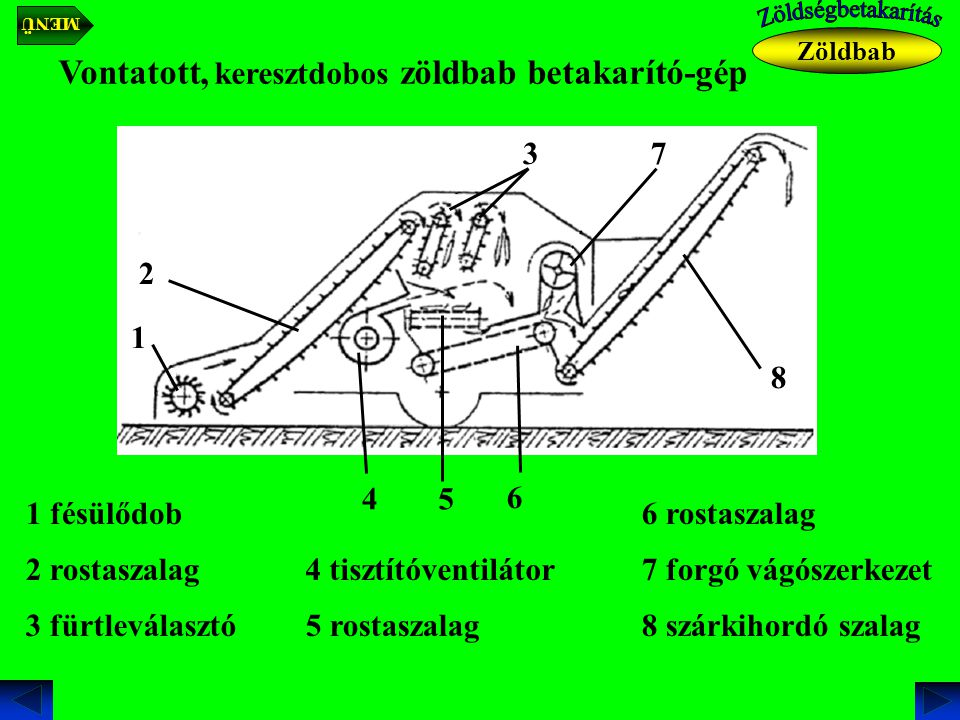 Vontatott, keresztdobos zöldbab betakarító-gép 1 fésülődob 1 2 rostaszalag 2 3 fürtleválasztó 3 4 tisztítóventilátor 4 5 rostaszalag 5 6 rostaszalag 7 forgó vágószerkezet 7 6 8 8 szárkihordó szalag Zöldbab MENÜ