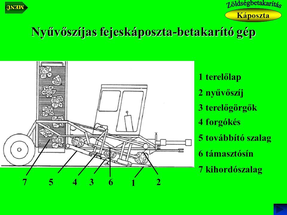 Nyűvőszíjas fejeskáposzta-betakarító gép Káposzta 1 terelőlap 1 2 nyűvőszíj 23 3 terelőgörgők 4 4 forgókés 5 5 továbbító szalag 7 6 támasztósín 6 7 kihordószalag MENÜ