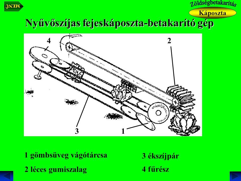Nyűvőszíjas fejeskáposzta-betakarító gép Káposzta 1 gömbsüveg vágótárcsa 1 2 léces gumiszalag 2 3 3 ékszíjpár 4 4 fűrész MENÜ