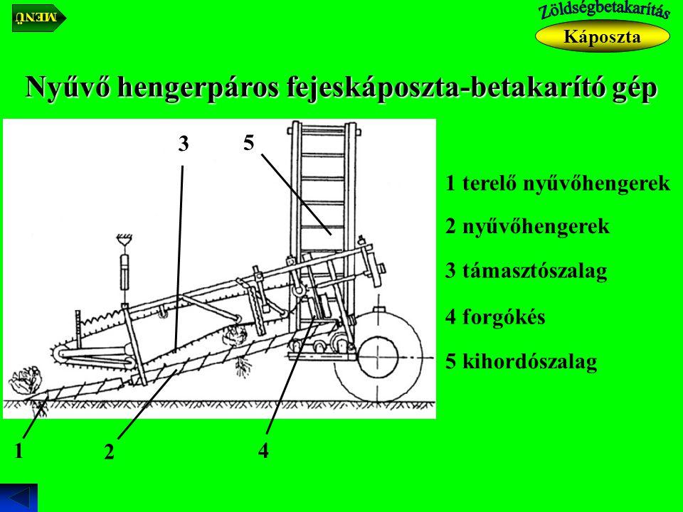 Káposzta Nyűvő hengerpáros fejeskáposzta-betakarító gép 1 terelő nyűvőhengerek 1 2 nyűvőhengerek 2 3 támasztószalag 3 4 forgókés 4 5 kihordószalag 5 M