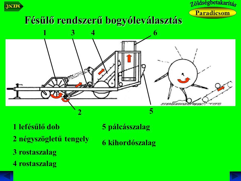 Fésülő rendszerű bogyóleválasztás 1 lefésűlő dob 1 2 négyszögletű tengely 2 3 rostaszalag 3 4 rostaszalag 4 5 pálcásszalag 5 6 kihordószalag 6 Paradicsom MENÜ