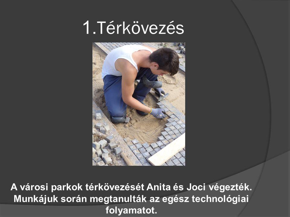 1.Térkövezés A városi parkok térkövezését Anita és Joci végezték.