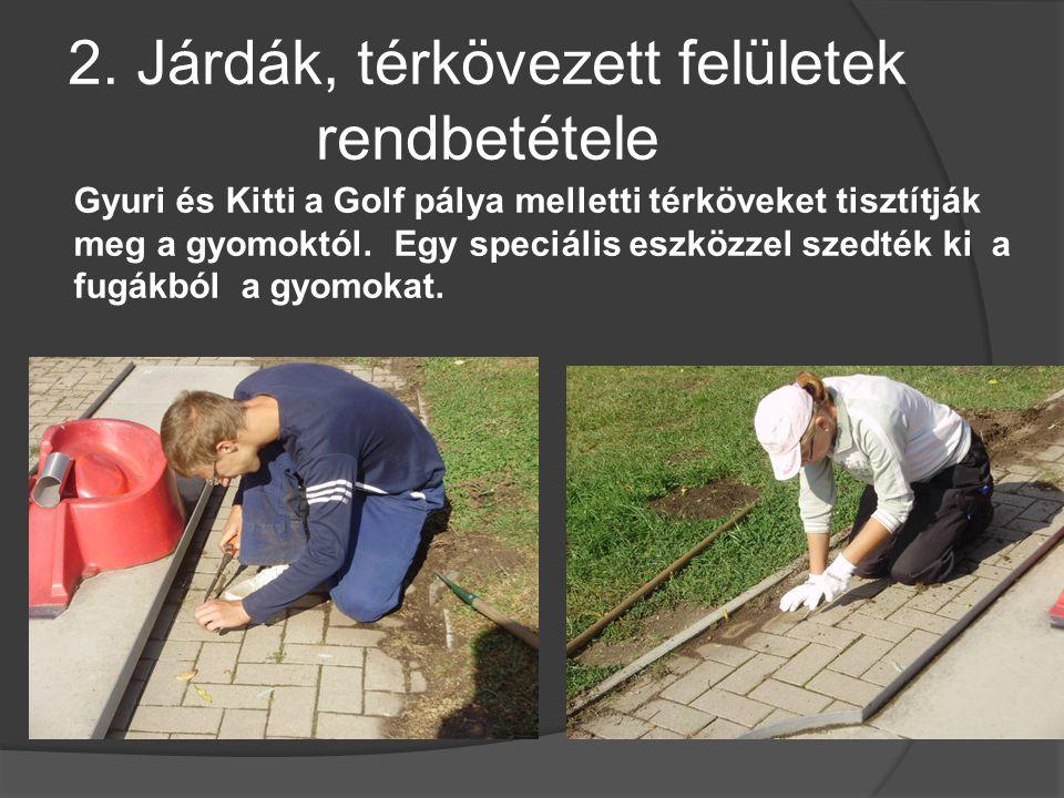 2. Járdák, térkövezett felületek rendbetétele Gyuri és Kitti a Golf pálya melletti térköveket tisztítják meg a gyomoktól. Egy speciális eszközzel szed