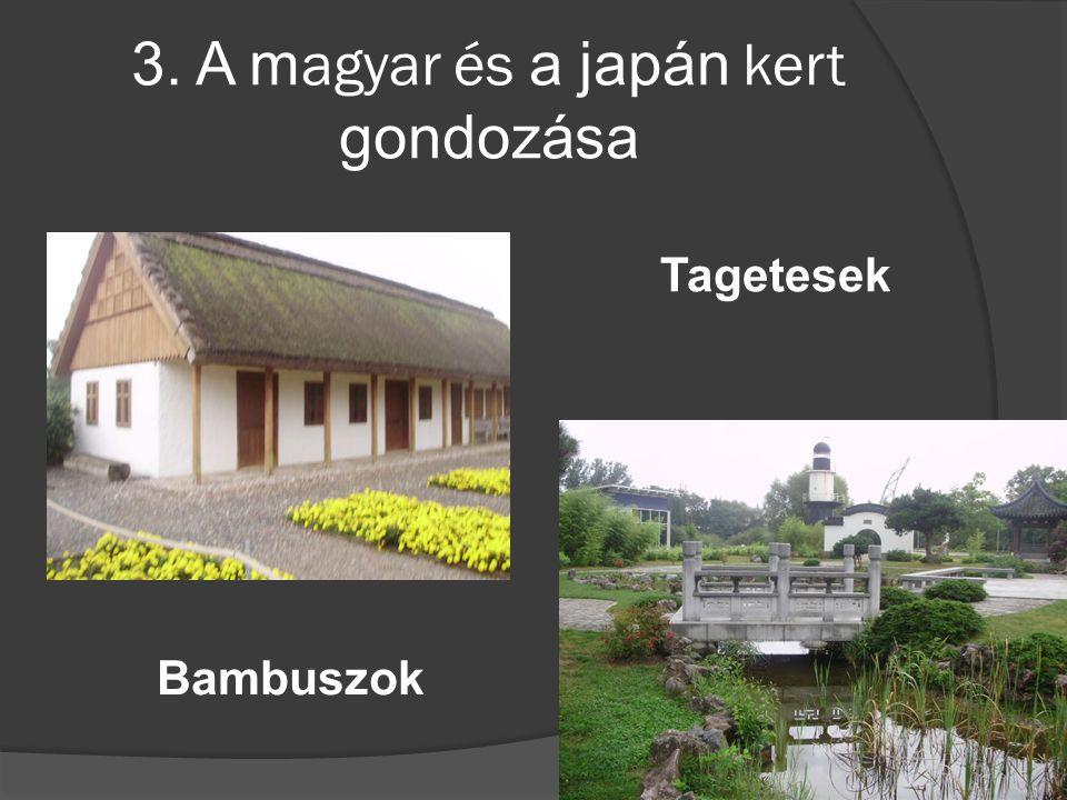 3. A m agyar és a japán kert gondozása Tagetesek Bambuszok