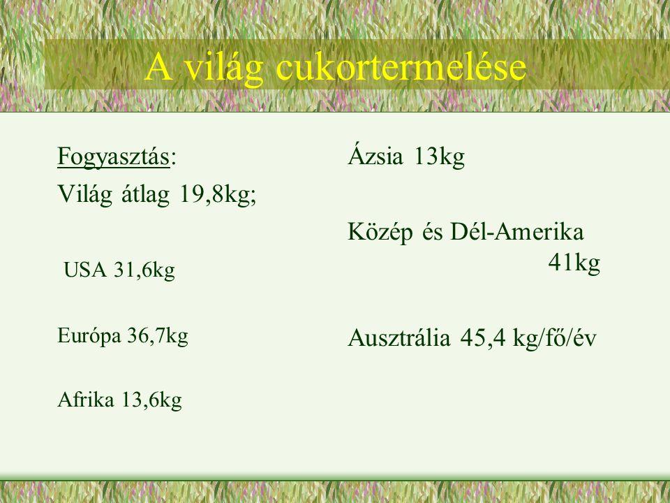 A világ cukortermelése Fogyasztás: Világ átlag 19,8kg; USA 31,6kg Európa 36,7kg Afrika 13,6kg Ázsia 13kg Közép és Dél-Amerika 41kg Ausztrália 45,4 kg/