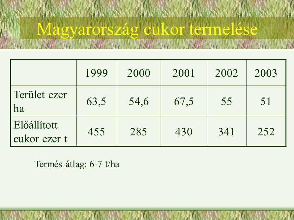 19992000200120022003 Terület ezer ha 63,554,667,55551 Előállított cukor ezer t 455285430341252 Termés átlag: 6-7 t/ha