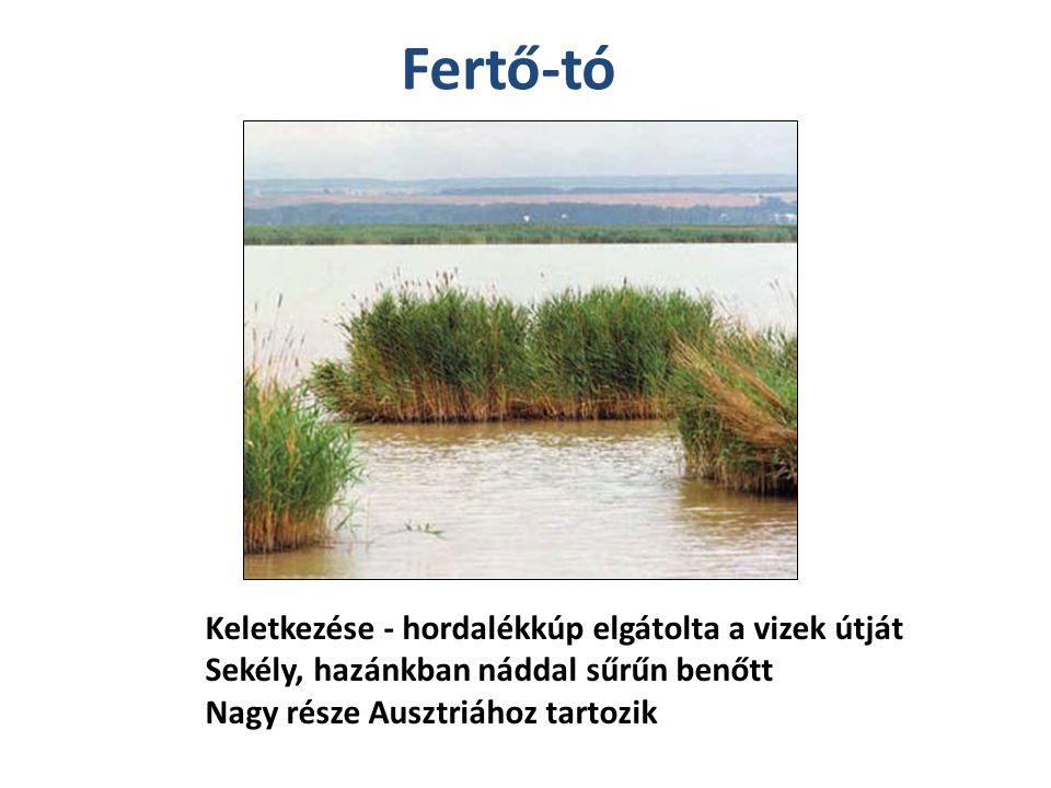 Fertő-tó Keletkezése - hordalékkúp elgátolta a vizek útját Sekély, hazánkban náddal sűrűn benőtt Nagy része Ausztriához tartozik