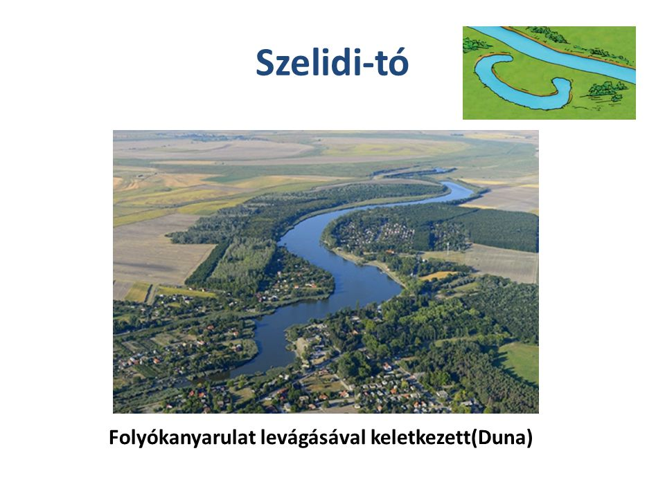Szelidi-tó Folyókanyarulat levágásával keletkezett(Duna)