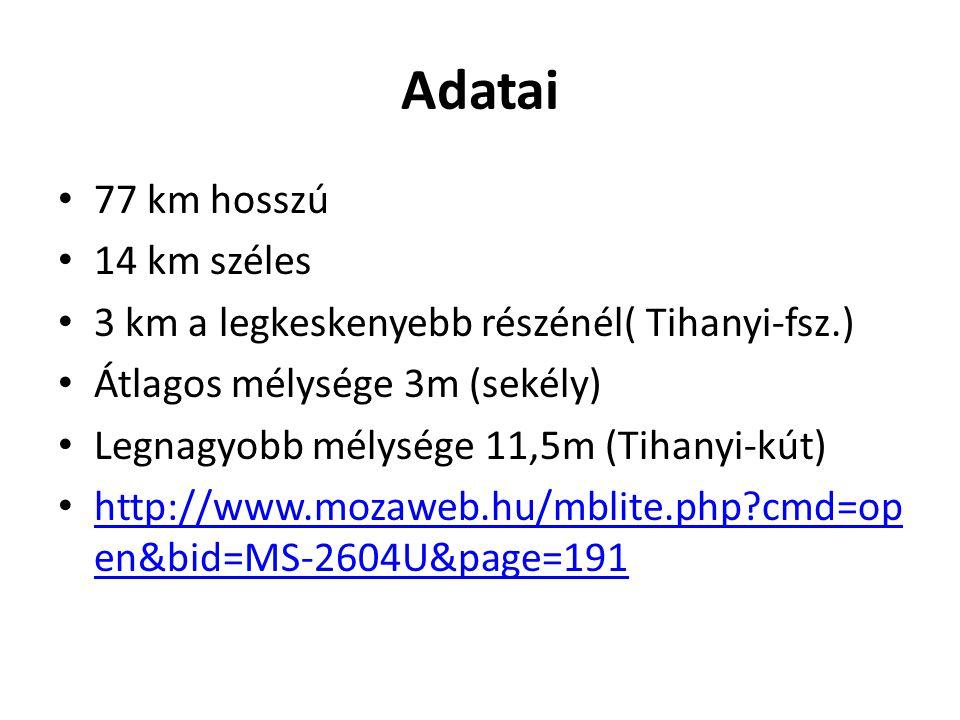 Adatai 77 km hosszú 14 km széles 3 km a legkeskenyebb részénél( Tihanyi-fsz.) Átlagos mélysége 3m (sekély) Legnagyobb mélysége 11,5m (Tihanyi-kút) http://www.mozaweb.hu/mblite.php?cmd=op en&bid=MS-2604U&page=191 http://www.mozaweb.hu/mblite.php?cmd=op en&bid=MS-2604U&page=191