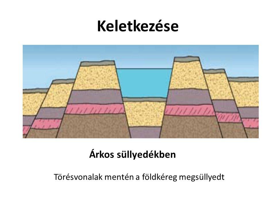 Keletkezése Árkos süllyedékben Törésvonalak mentén a földkéreg megsüllyedt