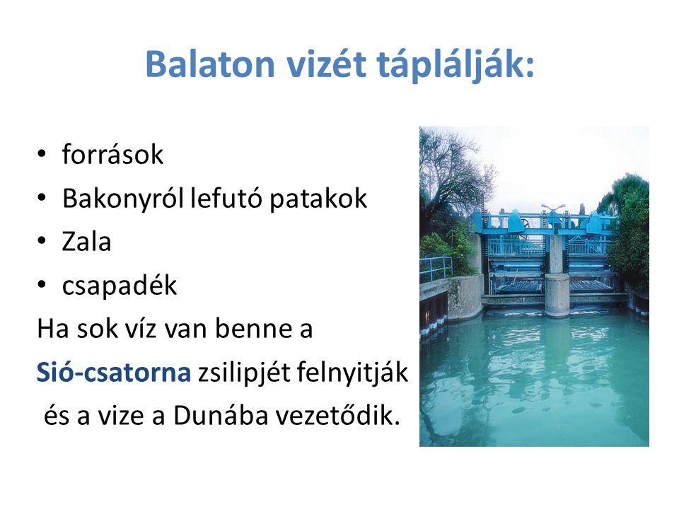 Északi part meredekebb, mert közelebb van a törésvonalhoz és a hullámok a Balaton üledékét is délre sodorják.