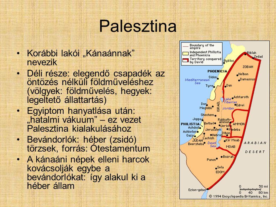 """Palesztina Korábbi lakói """"Kánaánnak"""" nevezik Déli része: elegendő csapadék az öntözés nélküli földműveléshez (völgyek: földművelés, hegyek: legeltető"""