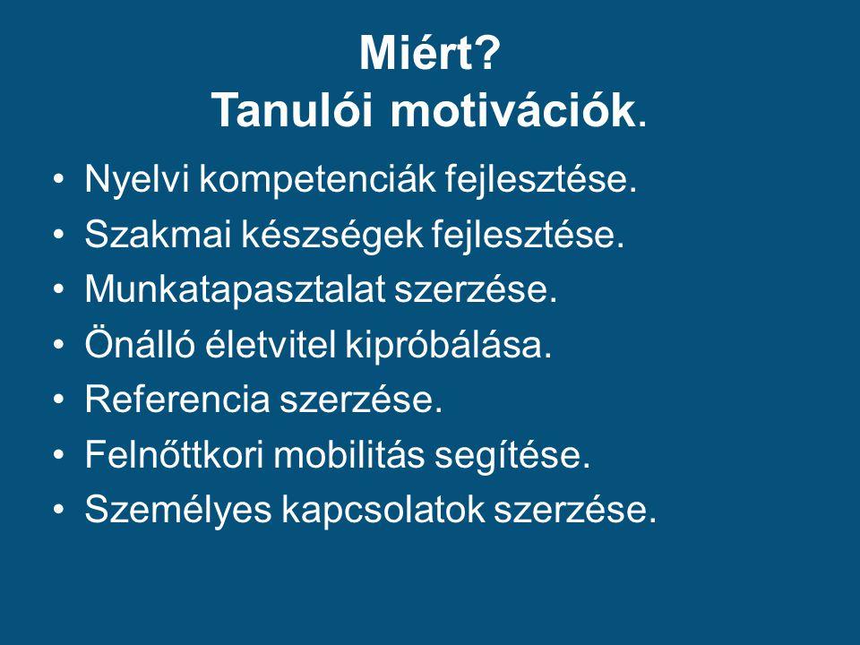 Miért. Tanulói motivációk. Nyelvi kompetenciák fejlesztése.
