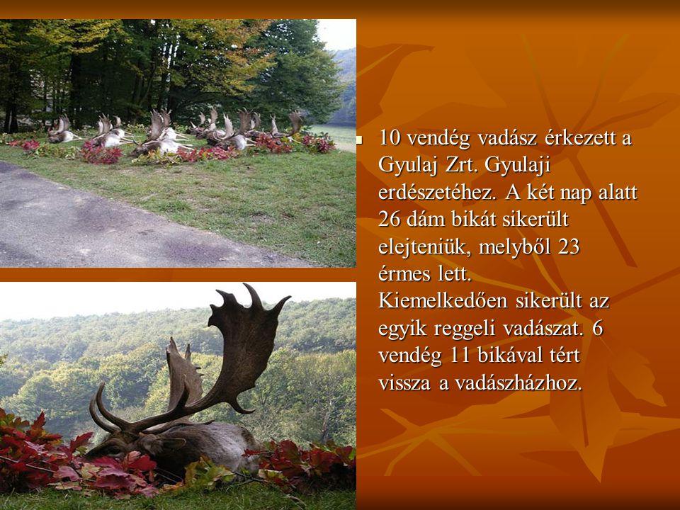 10 vendég vadász érkezett a Gyulaj Zrt. Gyulaji erdészetéhez.