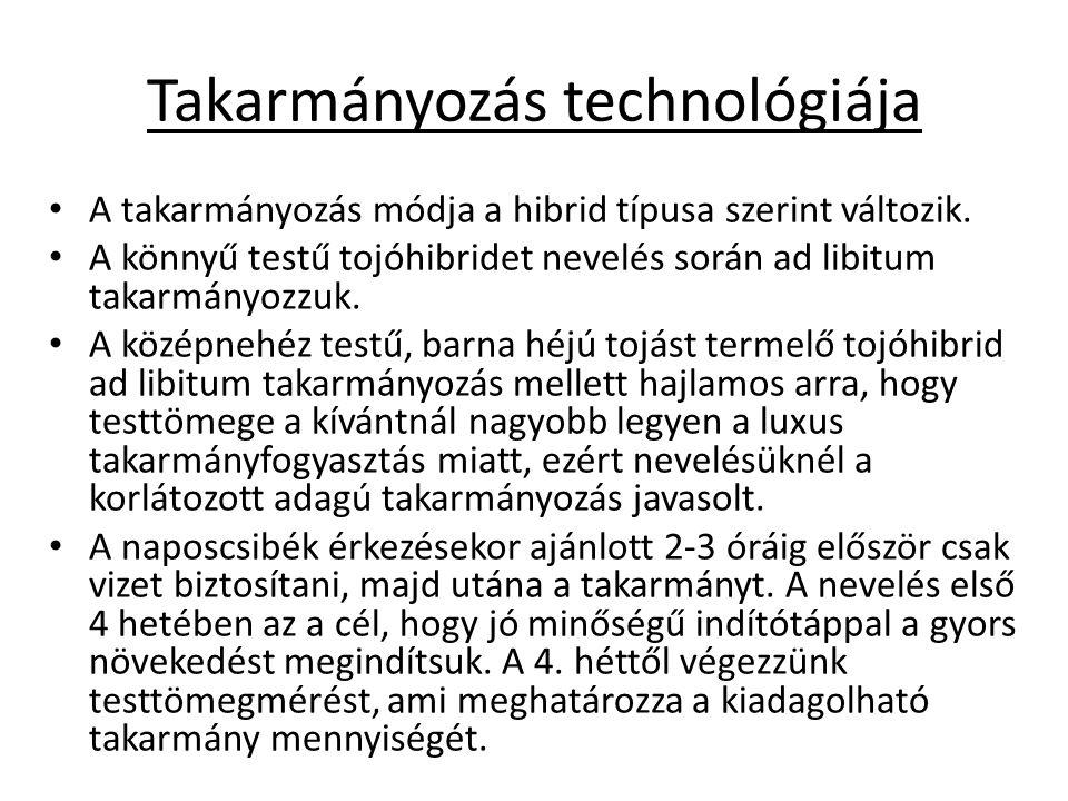 Takarmányozás technológiája A takarmányozás módja a hibrid típusa szerint változik.