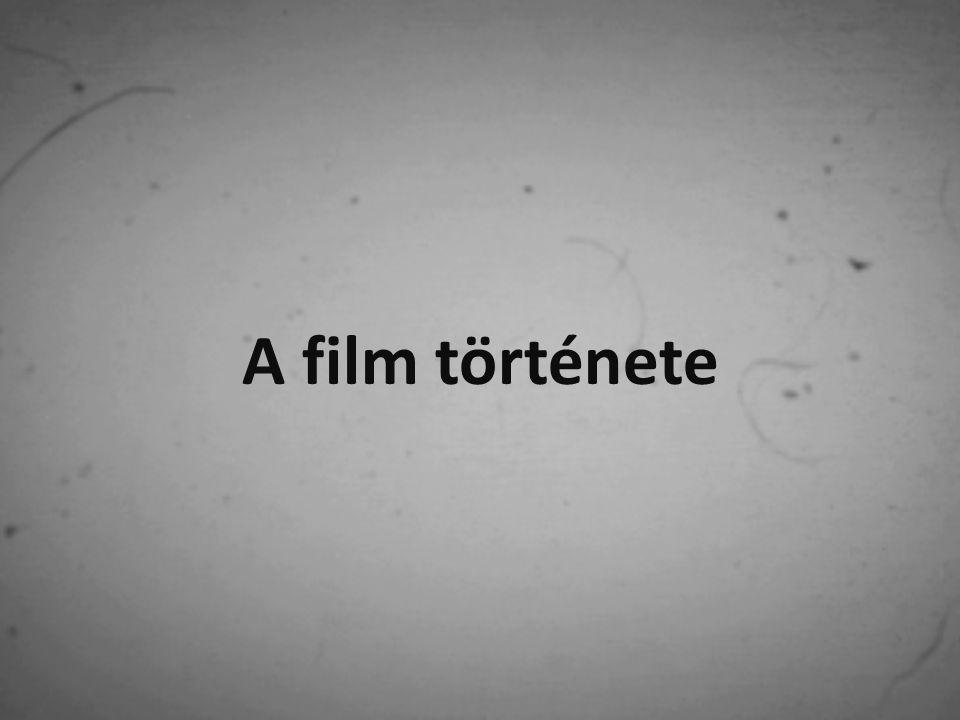 Lumière fivérek 1985 februárjában szabadalmaztatták a cinématographot Az első film a Lumière családi üzemből távozó munkásokat rögzítette