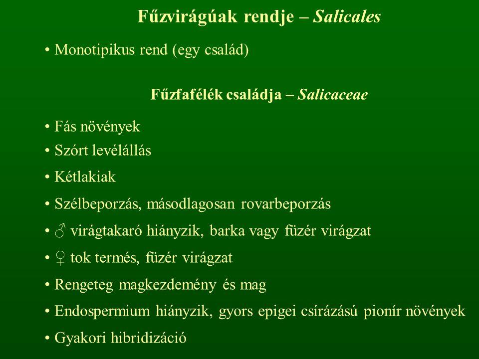Fűzvirágúak rendje – Salicales Monotipikus rend (egy család) Fűzfafélék családja – Salicaceae Fás növények Szórt levélállás Kétlakiak Szélbeporzás, másodlagosan rovarbeporzás ♂ virágtakaró hiányzik, barka vagy füzér virágzat ♀ tok termés, füzér virágzat Rengeteg magkezdemény és mag Endospermium hiányzik, gyors epigei csírázású pionír növények Gyakori hibridizáció