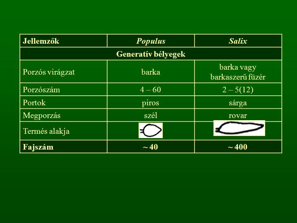 JellemzőkPopulusSalix Generatív bélyegek Porzós virágzatbarka barka vagy barkaszerű füzér Porzószám4 – 602 – 5(12) Portokpirossárga Megporzásszélrovar Termés alakja Fajszám~ 40~ 400