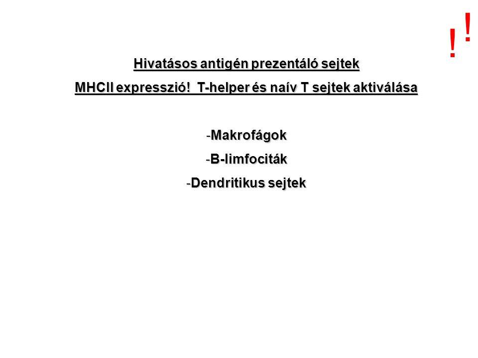 Hivatásos antigén prezentáló sejtek MHCII expresszió! T-helper és naív T sejtek aktiválása -Makrofágok -B-limfociták -Dendritikus sejtek ! !