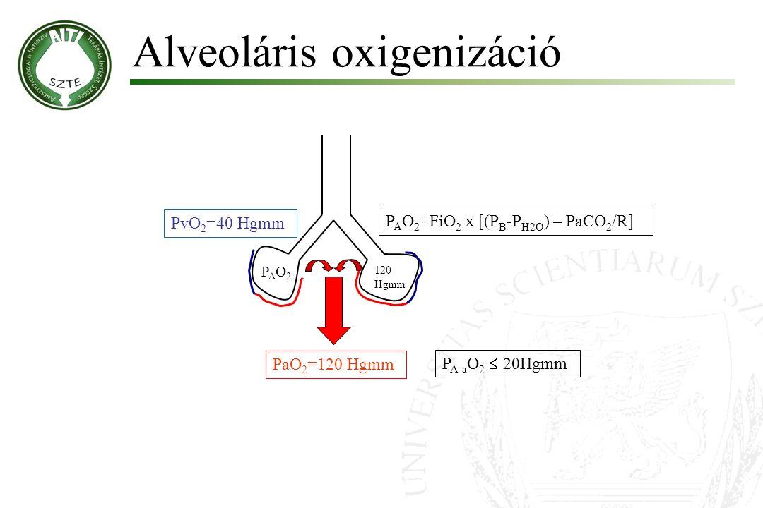 Alveoláris oxigenizáció Molnár '99 PAO2PAO2 PaO 2 =120 Hgmm 120 Hgmm P A O 2 =FiO 2 x [(P B -P H2O ) – PaCO 2 /R] P A-a O 2  20Hgmm PvO 2 =40 Hgmm