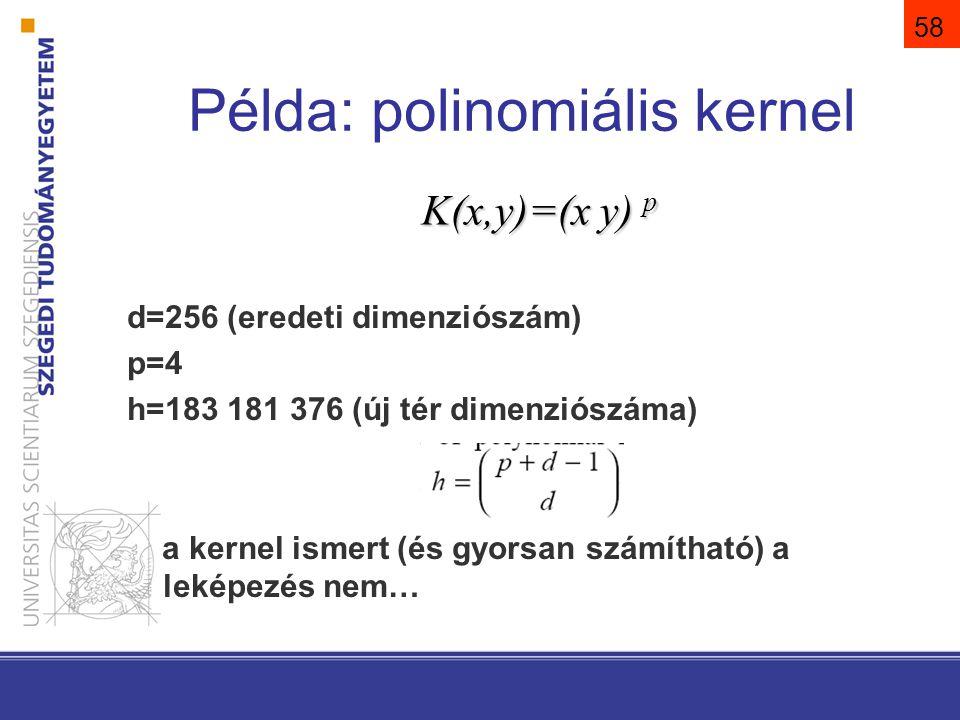 58 Példa: polinomiális kernel K(x,y)=(x y) p d=256 (eredeti dimenziószám) p=4 h=183 181 376 (új tér dimenziószáma) a kernel ismert (és gyorsan számíth