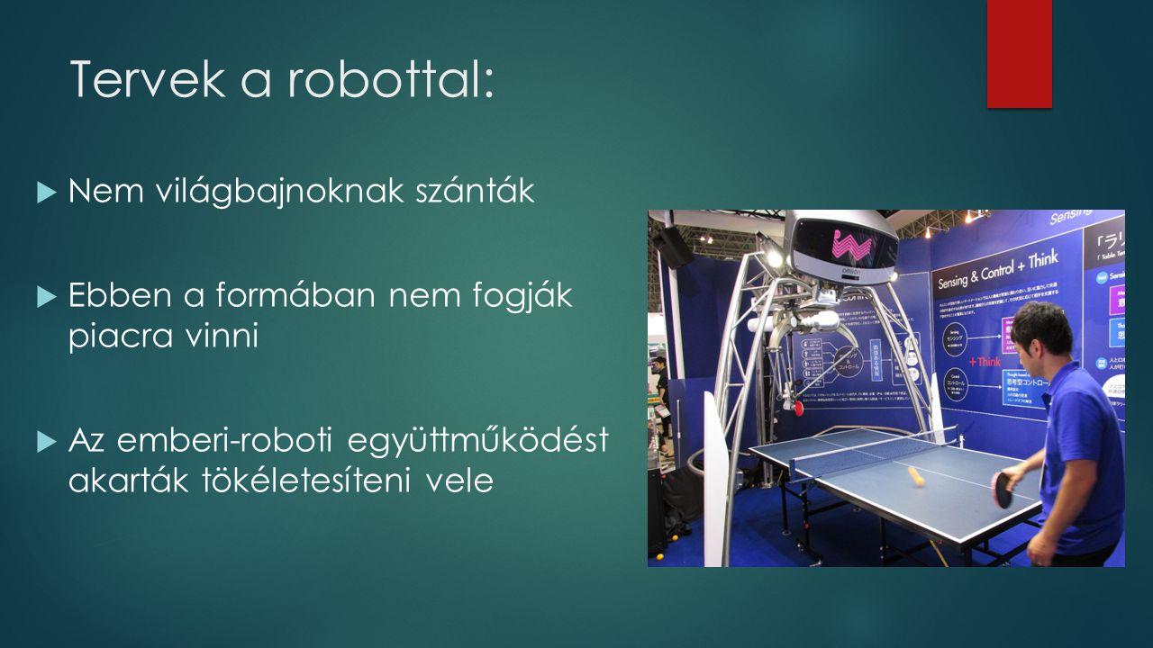 Tervek a robottal:  Nem világbajnoknak szánták  Ebben a formában nem fogják piacra vinni  Az emberi-roboti együttműködést akarták tökéletesíteni vele