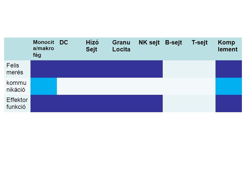 Monocit a/makro fág DCHízó Sejt Granu Locita NK sejtB-sejtT-sejtKomp lement Felis merés kommu nikáció Effektor funkció