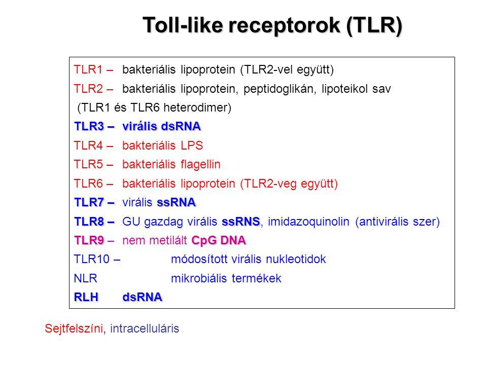 TLR1 – bakteriális lipoprotein (TLR2-vel együtt) TLR2 –bakteriális lipoprotein, peptidoglikán, lipoteikol sav (TLR1 és TLR6 heterodimer) TLR3 –virális