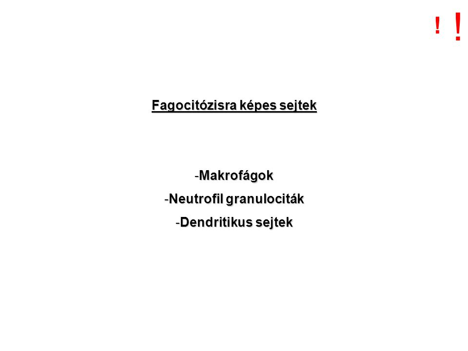 Fagocitózisra képes sejtek -Makrofágok -Neutrofil granulociták -Dendritikus sejtek ! !