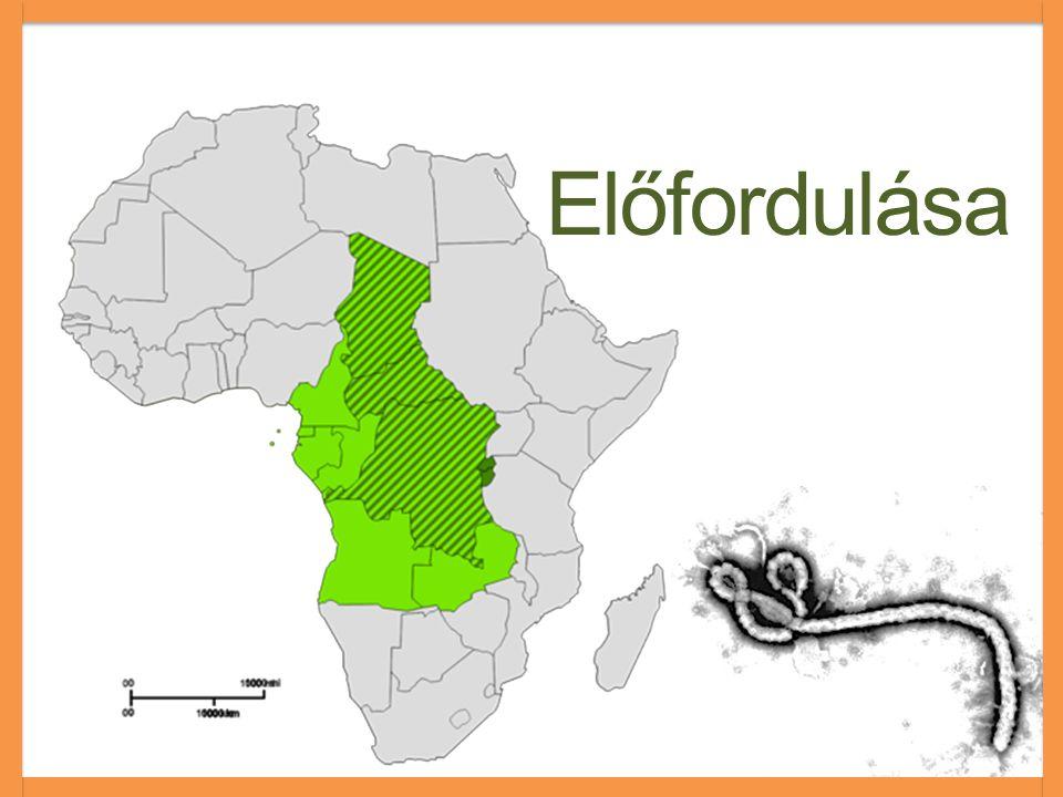 Általános tudnivalók  1976  Yumbuku, Kongó  90%  Gyümölcsevő denevér  Nincs ellenszer