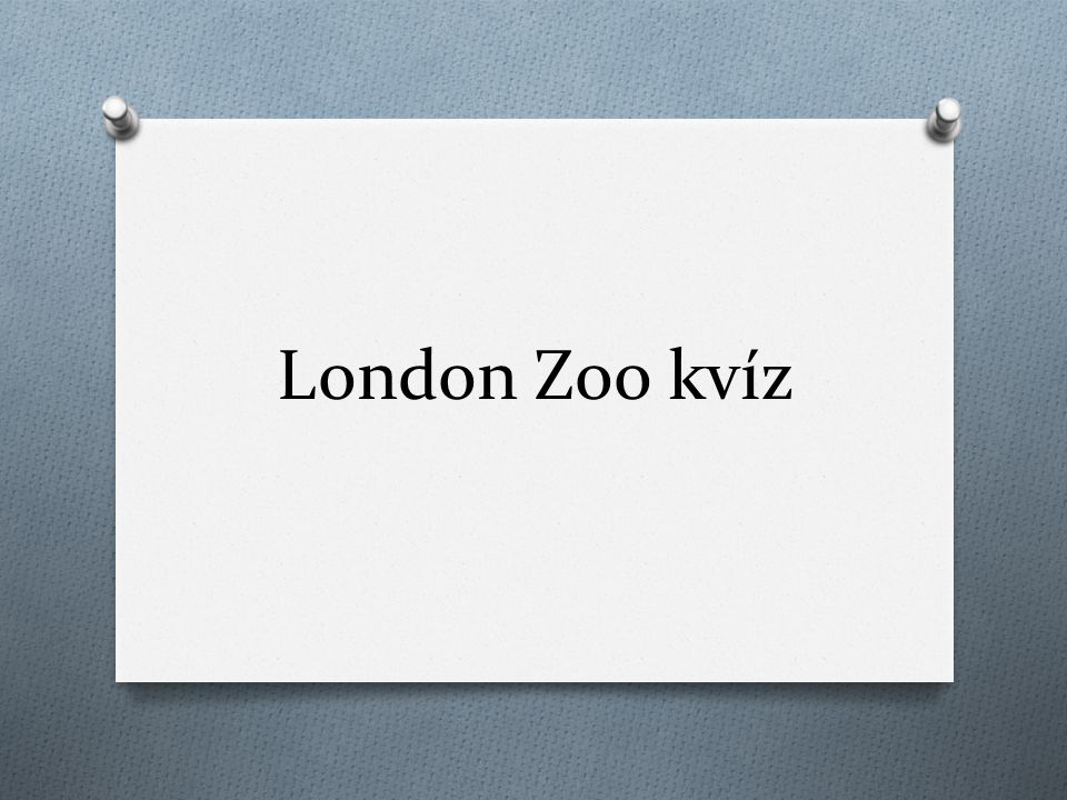 London Zoo kvíz