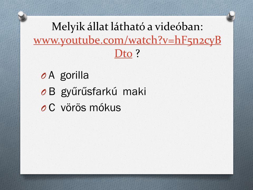 Melyik állat látható a videóban: www.youtube.com/watch v=hF5n2cyB Dto .