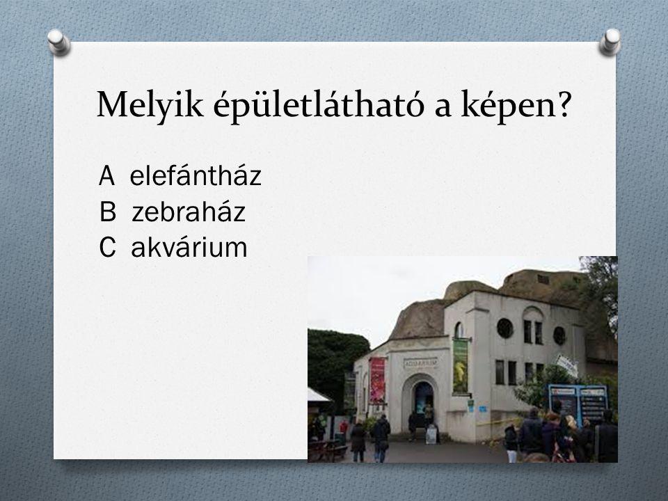 Melyik épületlátható a képen A elefántház B zebraház C akvárium