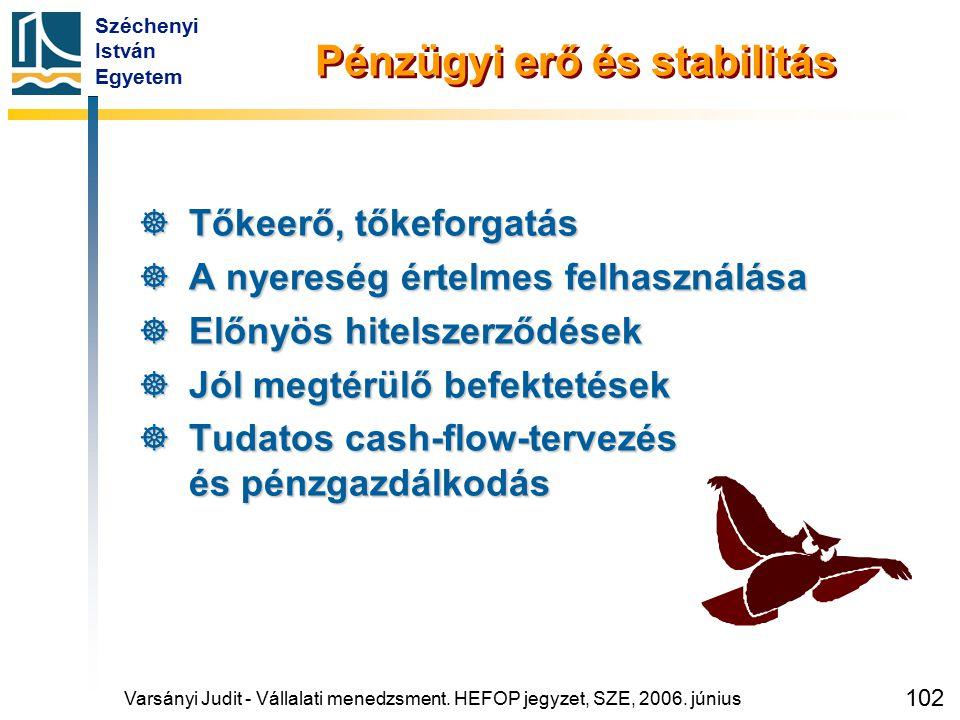 Széchenyi István Egyetem 102 Pénzügyi erő és stabilitás  Tőkeerő, tőkeforgatás  A nyereség értelmes felhasználása  Előnyös hitelszerződések  Jól m